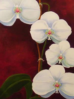 Phaleanopsis Poster by Anne Marie Brown