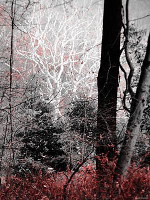 Phantasm In Wildwood Poster