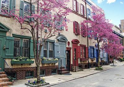 Philadelphia Blossoming In The Spring Poster