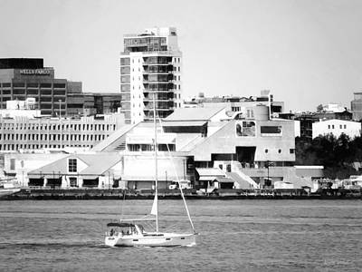 Philadelphia Pa - Sailboat By Penn's Landing Black And White Poster by Susan Savad