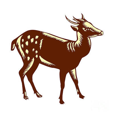 Philippine Spotted Deer Woodcut Poster