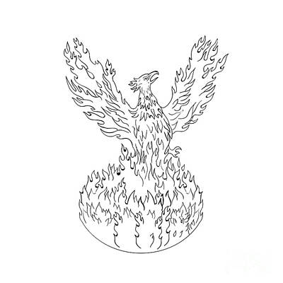 Phoenix Rising Fiery Flames Black And White Drawing Poster by Aloysius Patrimonio