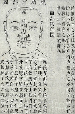 Physiognomy Diagnosis Chart, 1817 Poster