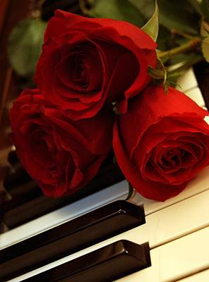 Piano And Roses Poster