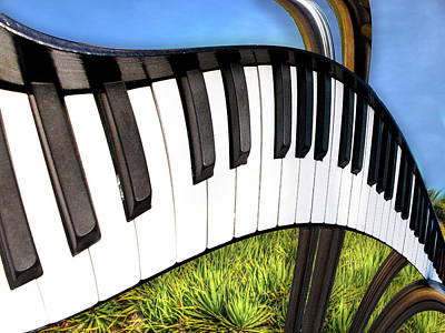 Poster featuring the photograph Piano Land by Paul Wear