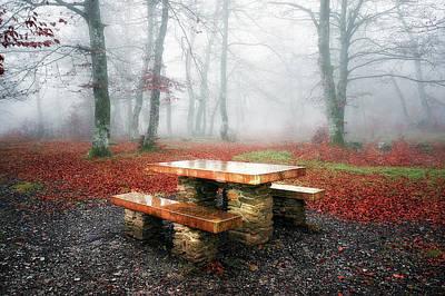 Picnic Of Fog Poster