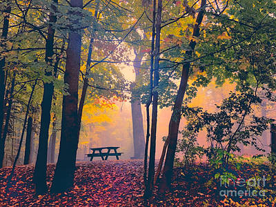 Picnic Table In The Autumn Woods Poster by Robert Gaines