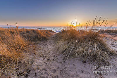 Pier Port Beach Dunes Poster by Twenty Two North Photography