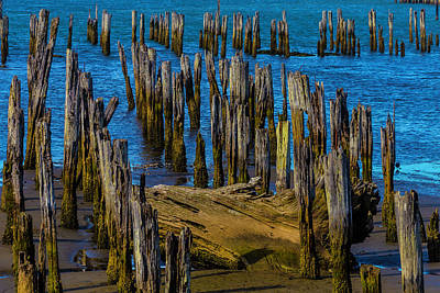 Pier Posts In Decay Poster