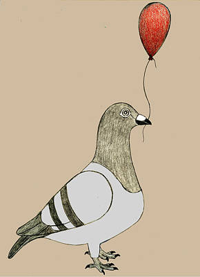 Pigeon Dreams Poster