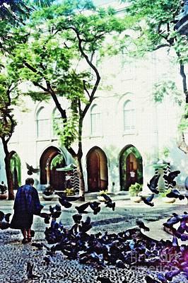 Pigeons In Lisboa Poster