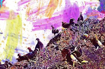 Pigeons Meeting Many Mass  Poster