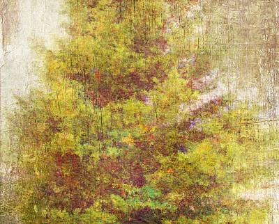 Pinaceae Poster by Brett Pfister