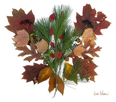 Poster featuring the digital art Pine And Leaf Bouquet by Lise Winne