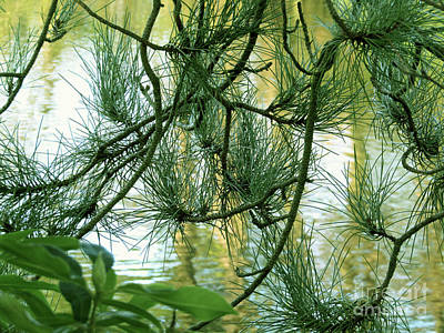 Pine Needles Patchwork Poster