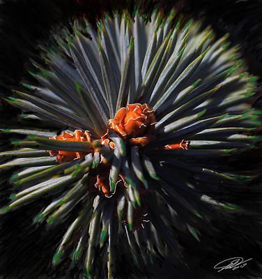 Pine Rose Poster