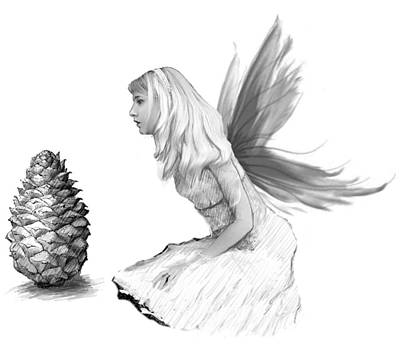 Pine Tree Fairy With Pine Cone B And W Poster