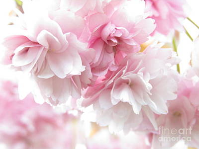 Pink April Poster