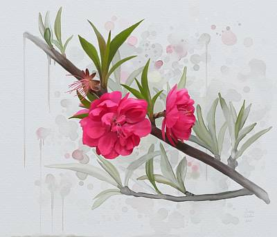Poster featuring the painting Hot Pink Blossom by Ivana Westin