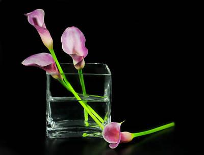 Pink Callas Poster