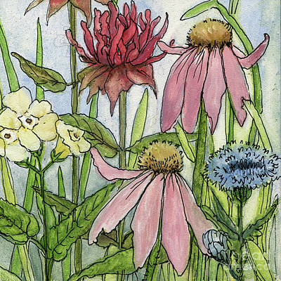 Pink Coneflower Poster
