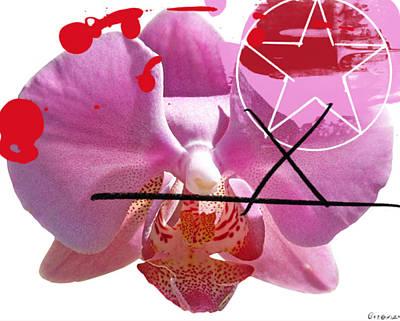 Pink Cowboy Hat X Poster