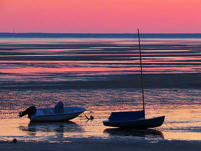 Poster featuring the photograph Pink Dawn by Dianne Cowen