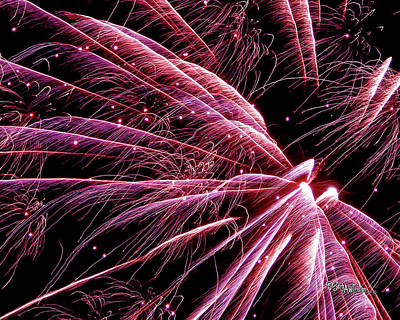 Poster featuring the photograph Pink Flamingo Fireworks #0710 by Barbara Tristan