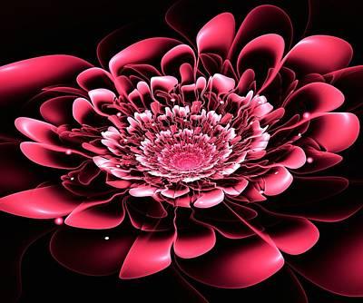 Pink Flower Poster by Anastasiya Malakhova