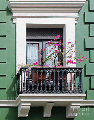 Pink Flowers On Balcony Poster