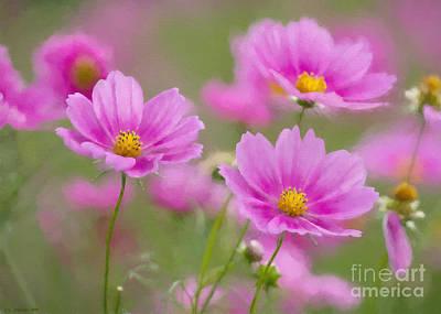 Pink Flowers Poster by Veikko Suikkanen