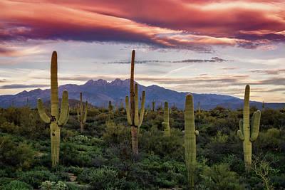 Poster featuring the photograph Pink Four Peaks Sunset  by Saija Lehtonen