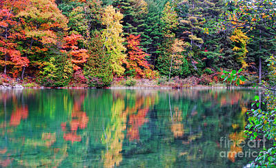 Pink Lake Fall Color Reflections Poster