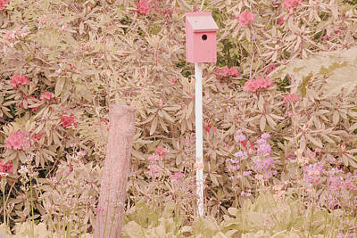 Poster featuring the photograph Pink Nesting Box by Bonnie Bruno