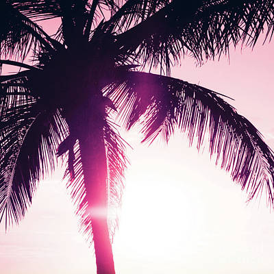 Poster featuring the photograph Pink Palm Tree Silhouettes Kihei Tropical Nights by Sharon Mau