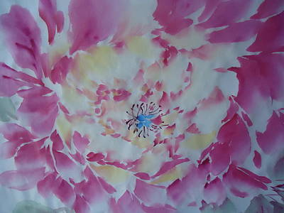 Pink Peony 002 Poster