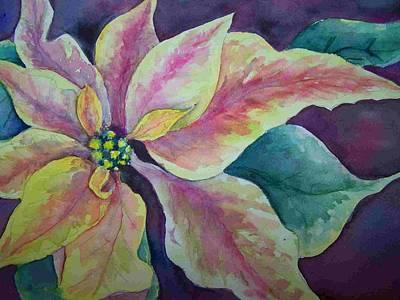 Poster featuring the painting Pink Poinsettia by Sandy Collier