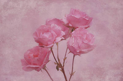 Pink Roses Poster by Sandy Keeton