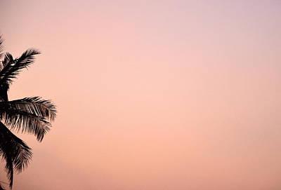 Pink Skies Poster by Corinne Rhode