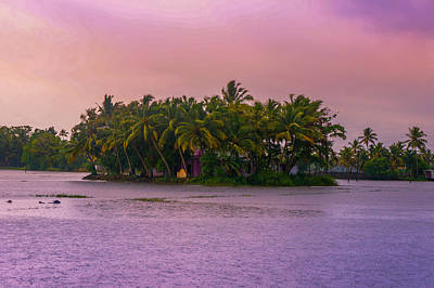 Pink Sunset Over Tropical Coconut Island At Backwaters Of Kerala, India Poster by Art Spectrum