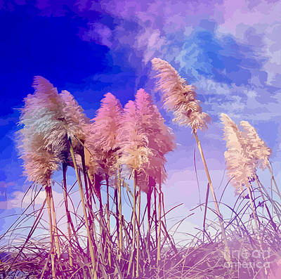 Pink Toi Toi Grasses Poster