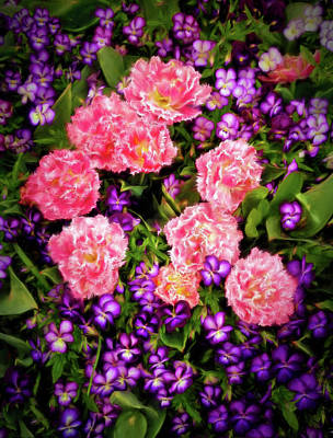 Poster featuring the photograph Pink Tulips With Purple Flowers by James Steele