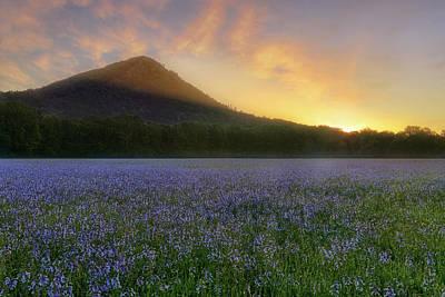 Pinnacle Mountain Sunrise - Arkansas - State Park Poster by Jason Politte