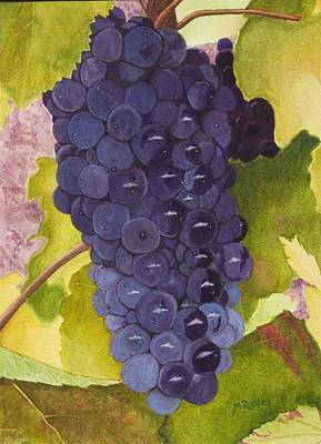Pinot Noir Ready For Harvest Poster by Mike Robles
