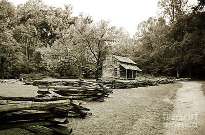 Pioneers Cabin Poster by Scott Pellegrin