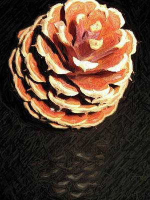 Pitch Pine Cone Poster by Susan Carella