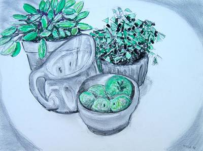 Pitcher And Plants Poster
