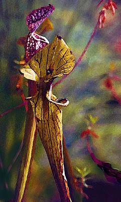 Pitcher Plant Poster by Janis Nussbaum Senungetuk