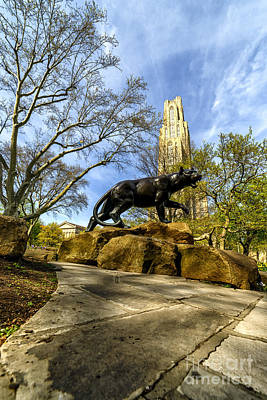 Pitt Panther Cathedral Of Learning Poster by Thomas R Fletcher