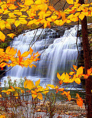 Pixley Falls Poster by Diane E Berry
